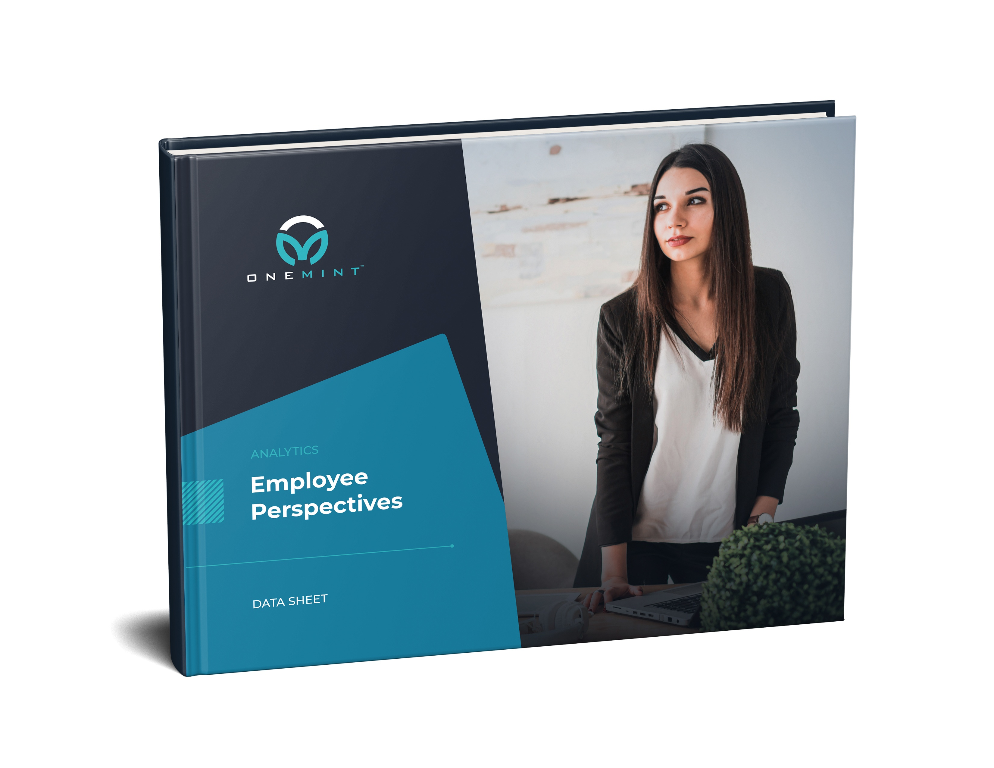 Employee Perspectives