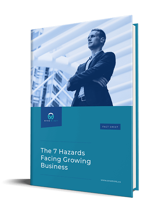 7-hazards-facing-growing-business-portrait