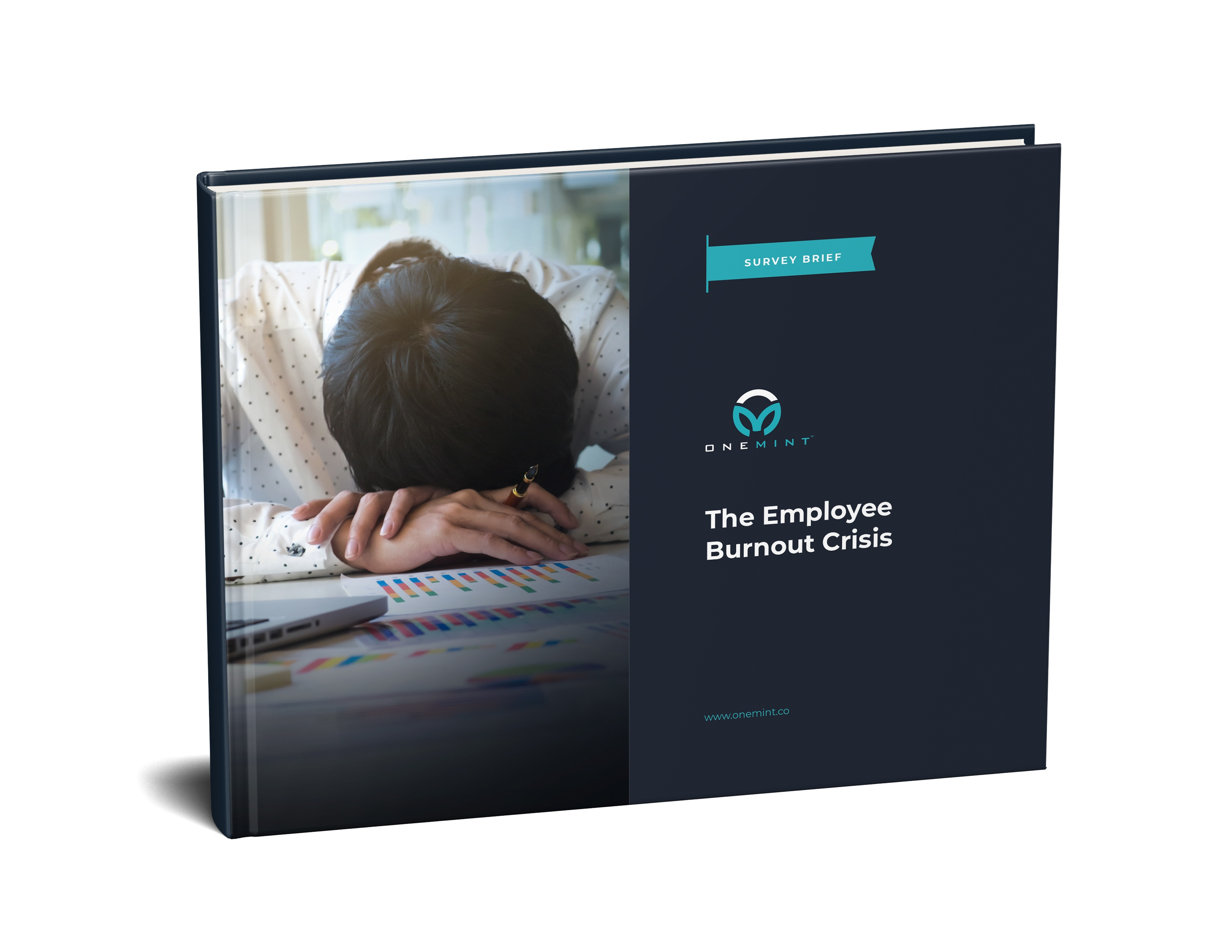 Survey Brief - The Solution to Employee Burnout