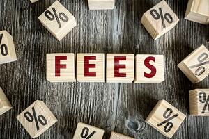 Wooden Blocks with the text Fees