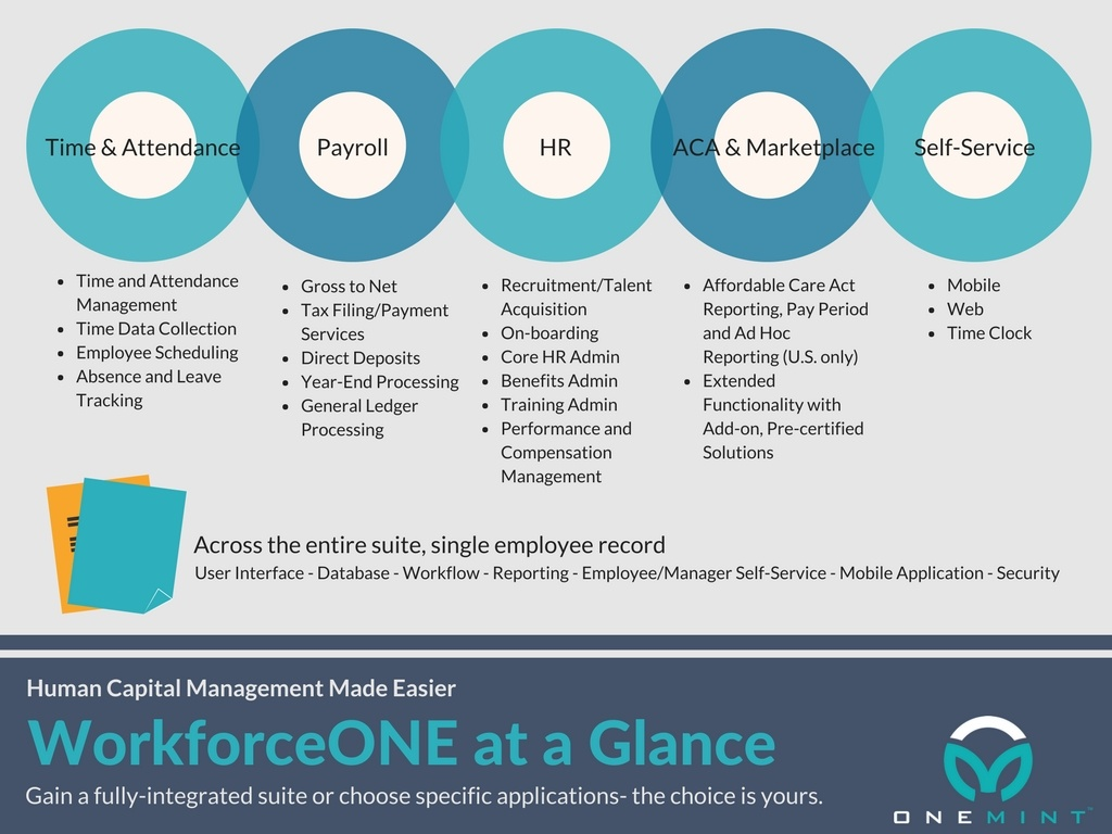 ONEMINT features at a glance infographic