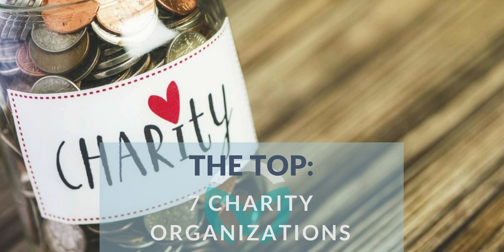 The Top: 7 Charity Organizations
